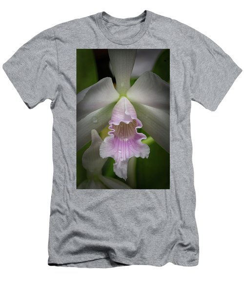 First Orchid Straight On Men's T-Shirt (Athletic Fit)