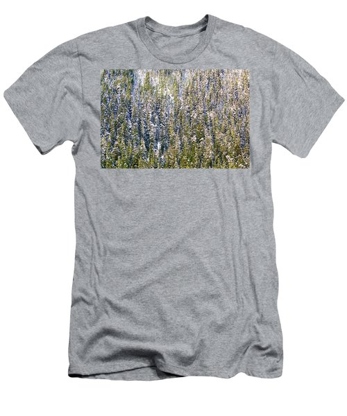 First Snow On Trees Men's T-Shirt (Athletic Fit)