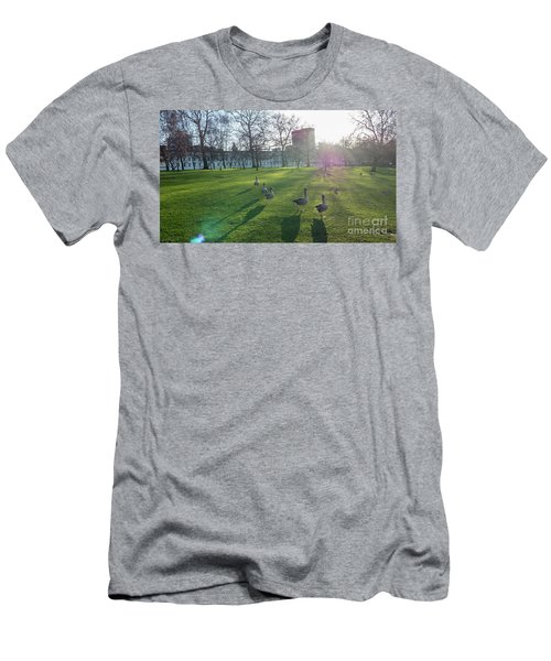 Five Ducks Walking In Line At Sunset With London Museum In The B Men's T-Shirt (Athletic Fit)
