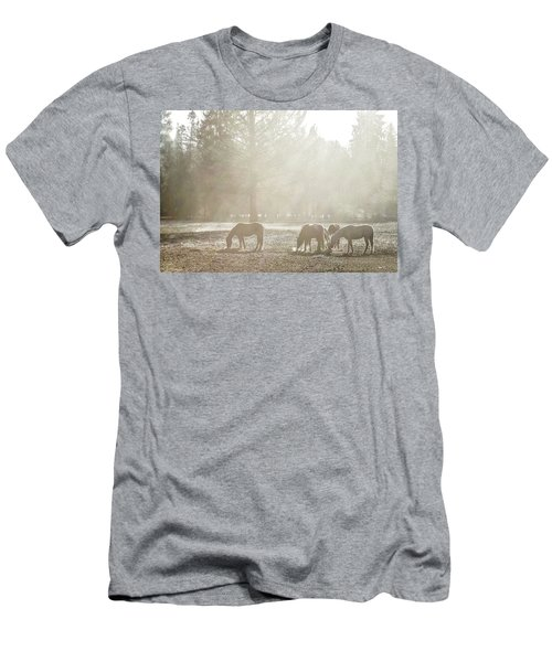 Five Horses In The Mist Men's T-Shirt (Athletic Fit)