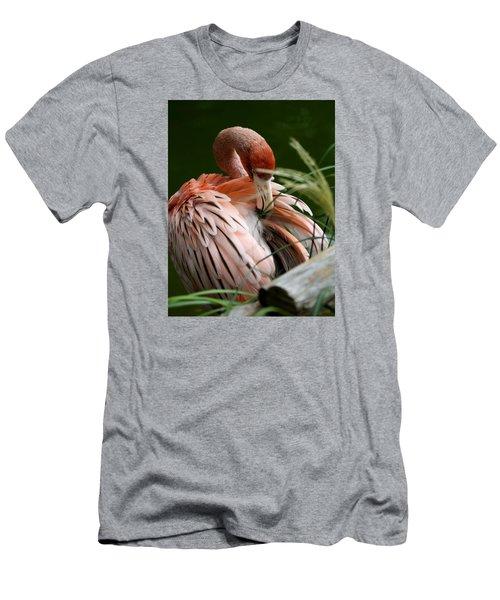 Flamingo Boudoir Men's T-Shirt (Athletic Fit)