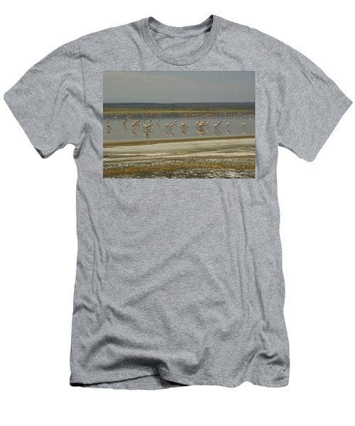 Flamingos Magadi Hot Springs Kenya Men's T-Shirt (Athletic Fit)