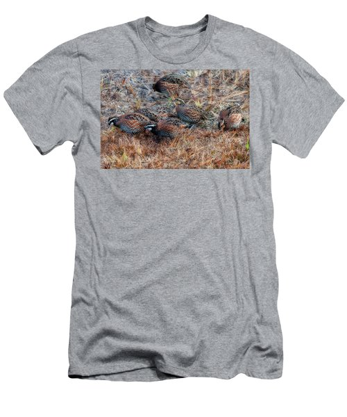Men's T-Shirt (Athletic Fit) featuring the photograph Flock Of Quail Feeding In Field by Dan Friend