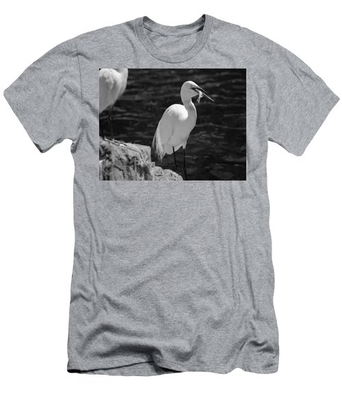 Florida White Egret Men's T-Shirt (Athletic Fit)