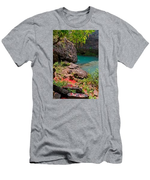 Flowers On Stone Men's T-Shirt (Athletic Fit)