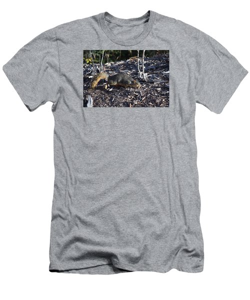 Men's T-Shirt (Athletic Fit) featuring the photograph Squirrel Pprh Woodland Park Co by Margarethe Binkley