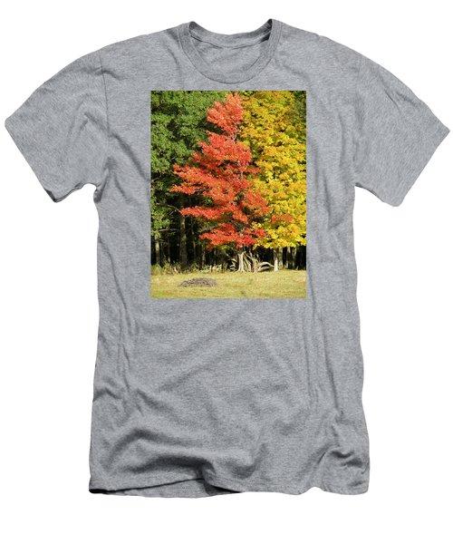 Forest Door Men's T-Shirt (Athletic Fit)