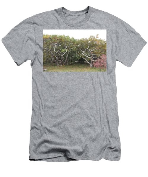 Forest Entry Men's T-Shirt (Athletic Fit)