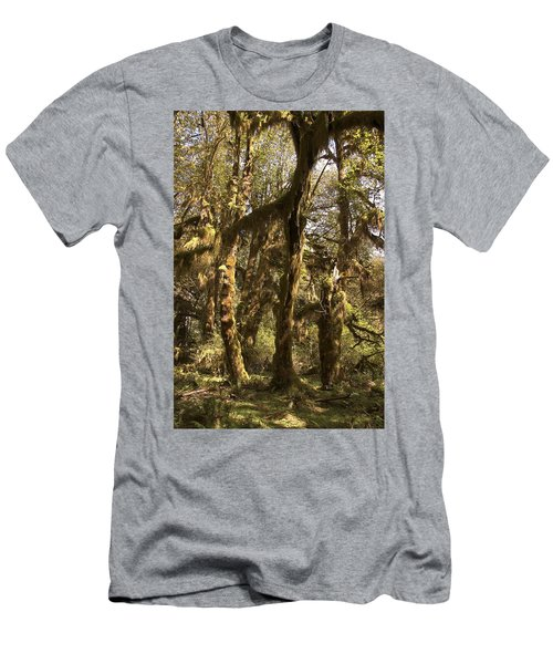 Forest Setting In Hoh Rain Forest Men's T-Shirt (Athletic Fit)
