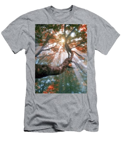 Forest With Fog And Sun Rays Men's T-Shirt (Athletic Fit)