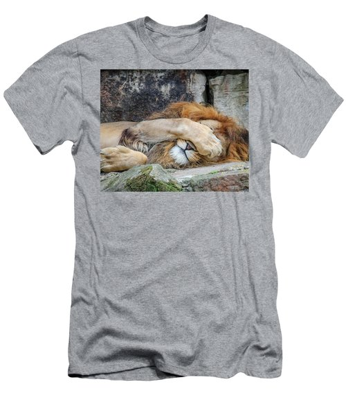 Fort Worth Zoo Sleepy Lion Men's T-Shirt (Athletic Fit)