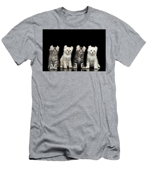 Four American Curl Kittens With Twisted Ears Isolated Black Background Men's T-Shirt (Slim Fit) by Sergey Taran
