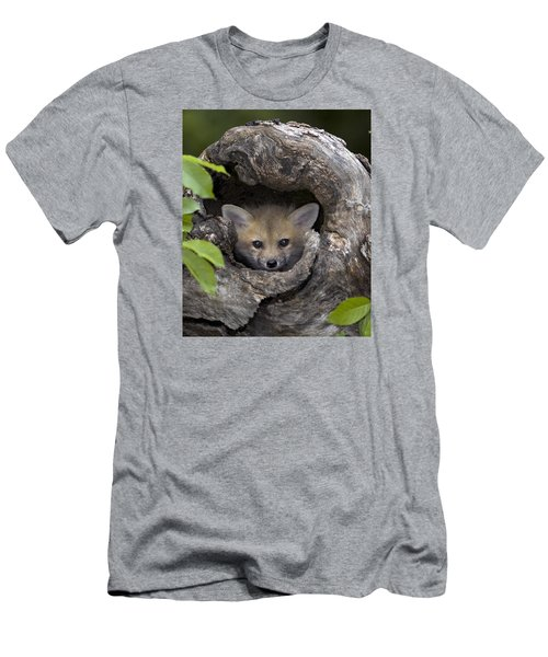 Fox Kit In Log Men's T-Shirt (Athletic Fit)