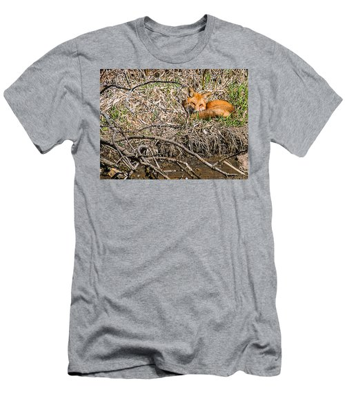 Men's T-Shirt (Slim Fit) featuring the photograph Fox Napping by Edward Peterson