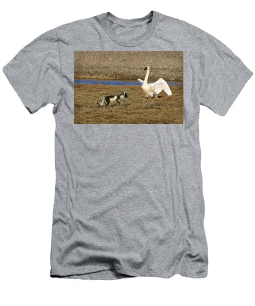 Fox Vs Tundra Swan Men's T-Shirt (Athletic Fit)