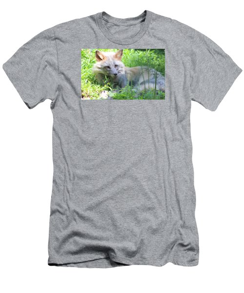 Men's T-Shirt (Slim Fit) featuring the photograph Foxy by Debra     Vatalaro