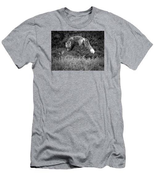 Foxy Gaze Men's T-Shirt (Athletic Fit)