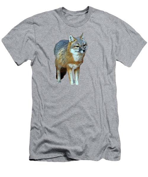 Foxy Men's T-Shirt (Athletic Fit)