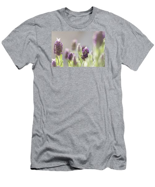 French Lavendar Buds Men's T-Shirt (Slim Fit) by Mary Angelini