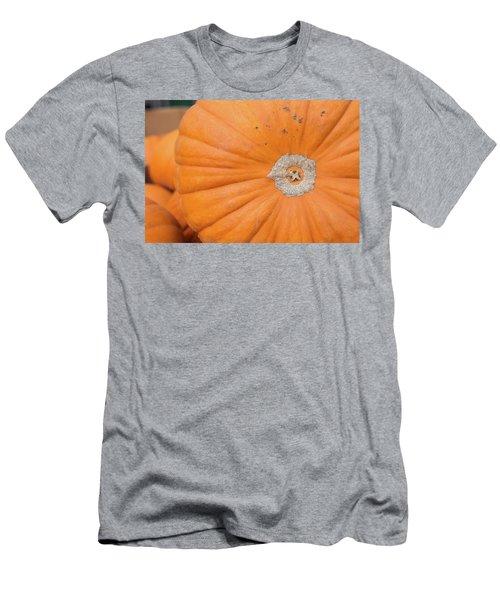 Fresh Organic Orange Giant Pumking Harvesting From Farm At Farme Men's T-Shirt (Slim Fit) by Jingjits Photography