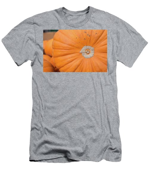 Fresh Organic Orange Giant Pumking Harvesting From Farm At Farme Men's T-Shirt (Athletic Fit)