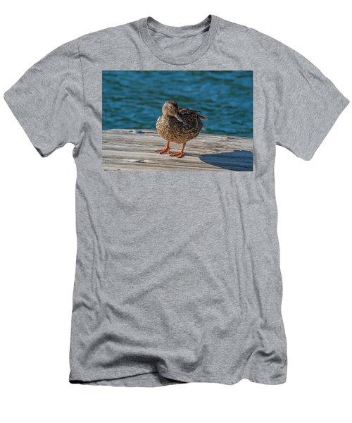Friendly Duck Men's T-Shirt (Athletic Fit)