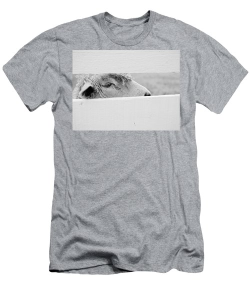 Friendly Sheep Men's T-Shirt (Athletic Fit)