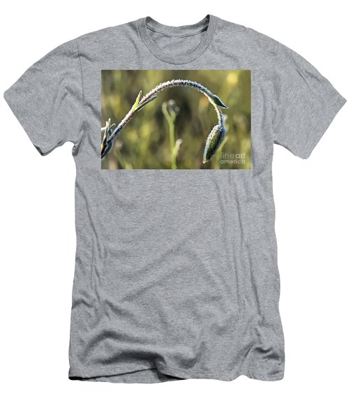 Frost On Flower Men's T-Shirt (Athletic Fit)