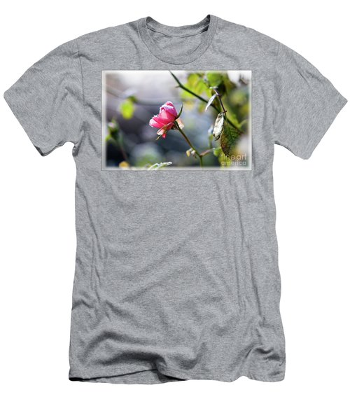Frosted Rose Men's T-Shirt (Athletic Fit)