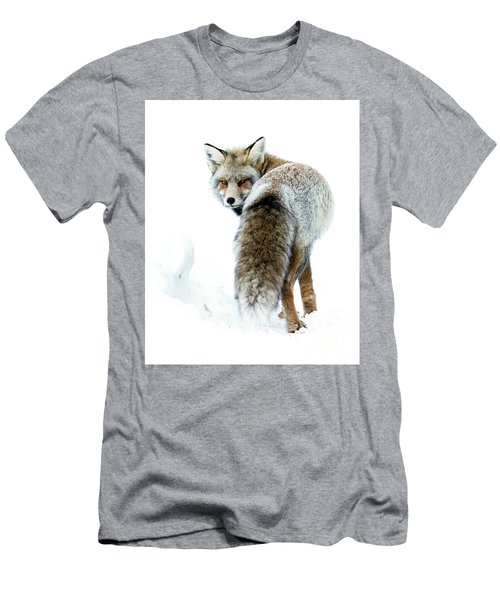 Frosty Fox Men's T-Shirt (Athletic Fit)