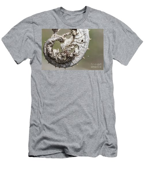 Men's T-Shirt (Slim Fit) featuring the photograph Furrow Orb Weaver On A Dry Thisle Leaf by Jivko Nakev