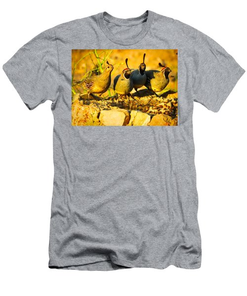 Gambel's Quail Foursome Men's T-Shirt (Athletic Fit)