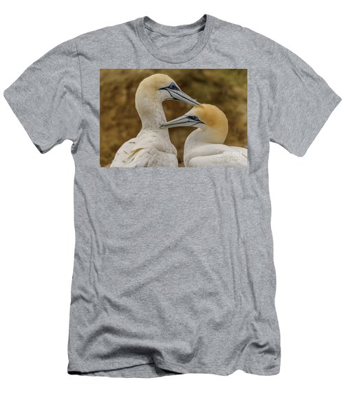 Gannets 4 Men's T-Shirt (Athletic Fit)