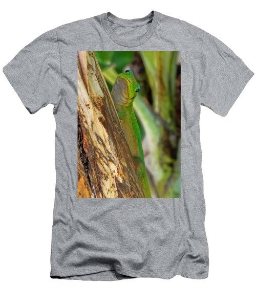 Gecko Up Close Men's T-Shirt (Athletic Fit)