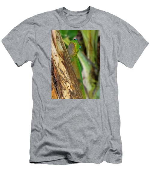 Gecko Up Close Men's T-Shirt (Athletic Fit)