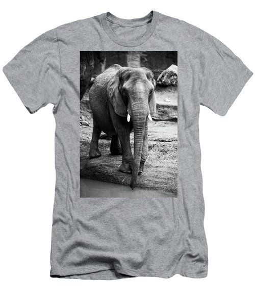 Men's T-Shirt (Slim Fit) featuring the photograph Gentle One by Karol Livote