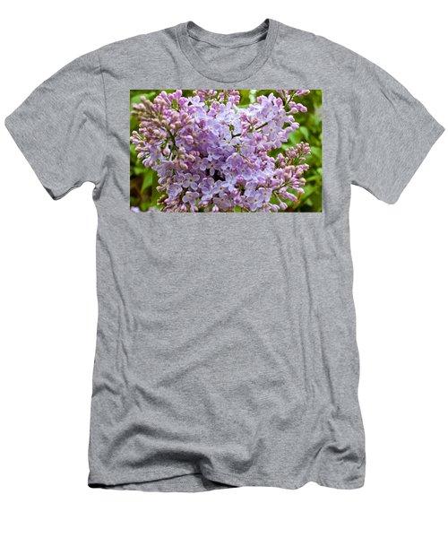 Gentle Purples Men's T-Shirt (Athletic Fit)