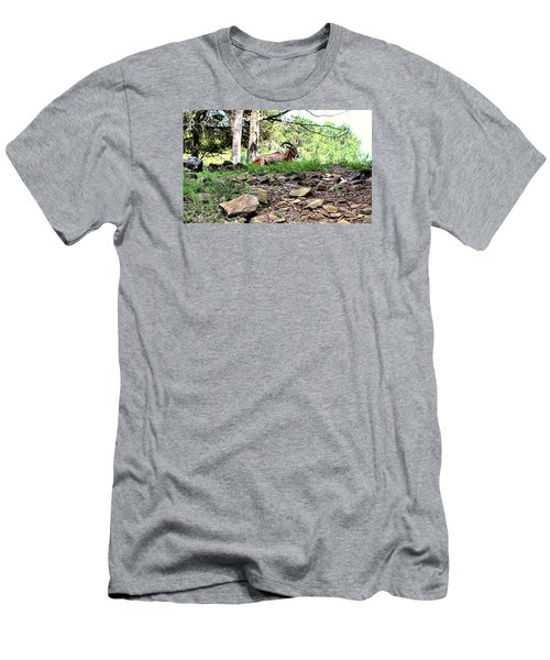 Georgia Mountain Goat At Rest Men's T-Shirt (Athletic Fit)