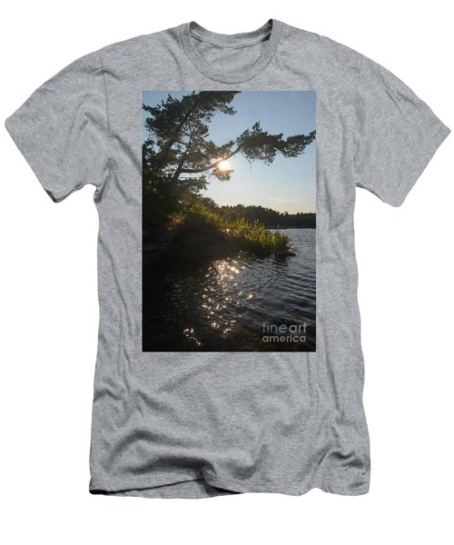Georgian Bay Sunset Tree Men's T-Shirt (Athletic Fit)