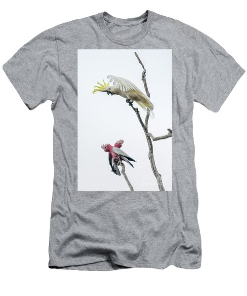Get Off My Perch Men's T-Shirt (Athletic Fit)
