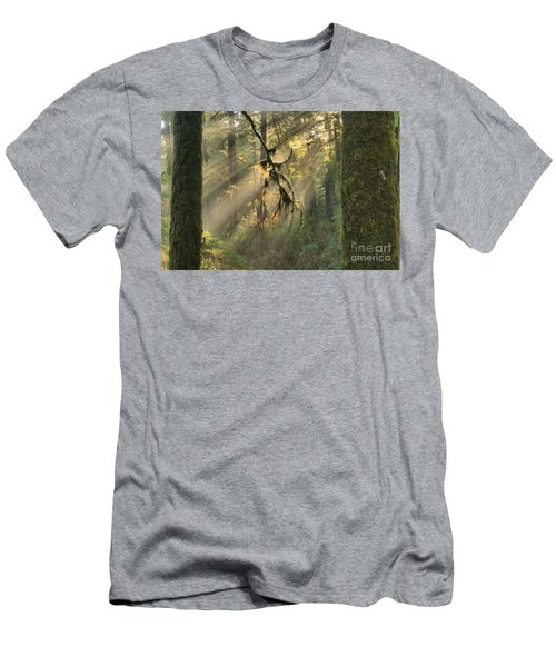 Giants And Light Beams Men's T-Shirt (Athletic Fit)