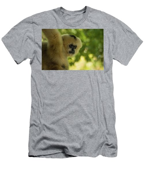 Gibbon Portrait Men's T-Shirt (Athletic Fit)