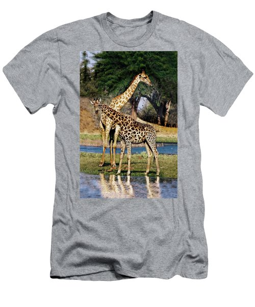 Giraffe Mother And Calf Men's T-Shirt (Athletic Fit)