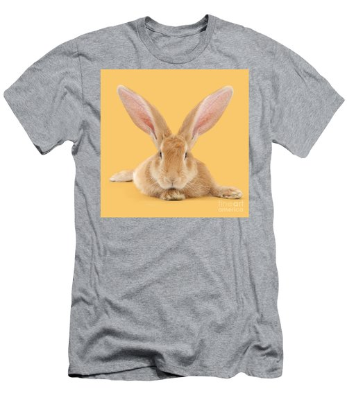 Go Ahead I'm All Ears Men's T-Shirt (Athletic Fit)