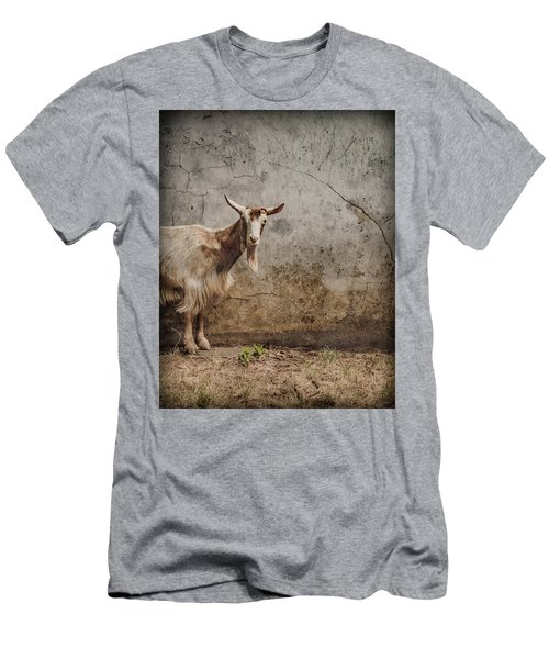 London, England - Goat Men's T-Shirt (Athletic Fit)