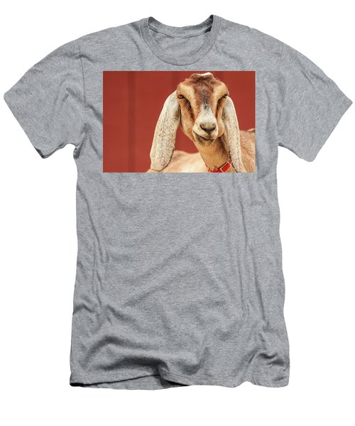 Goat With An Attitude Men's T-Shirt (Athletic Fit)