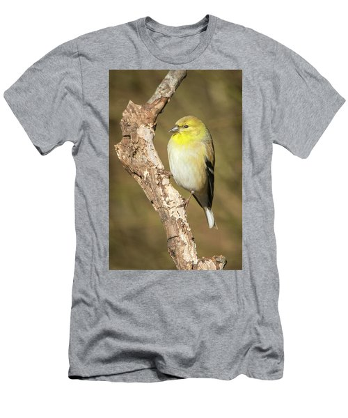 Men's T-Shirt (Athletic Fit) featuring the photograph Gold Finch by David Waldrop