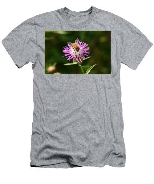 Golden Boy-bee At Work Men's T-Shirt (Slim Fit) by David Porteus