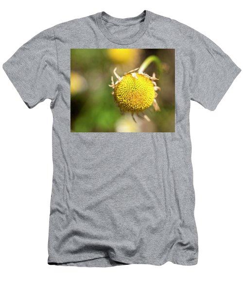 Golden Burst Men's T-Shirt (Athletic Fit)