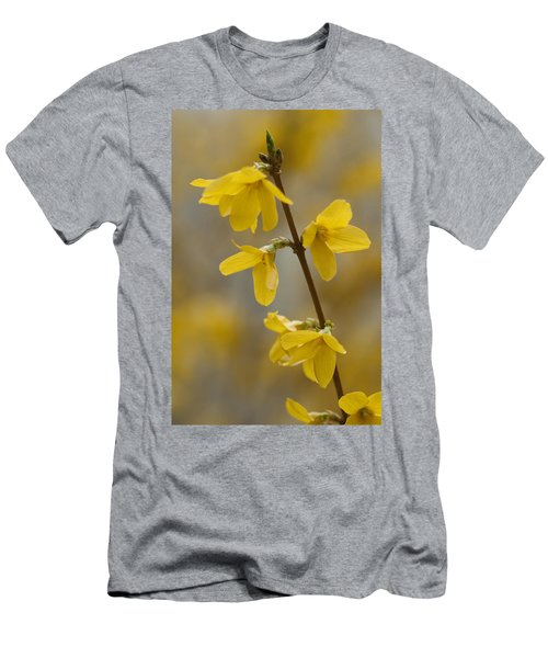 Golden Forsythia Men's T-Shirt (Athletic Fit)
